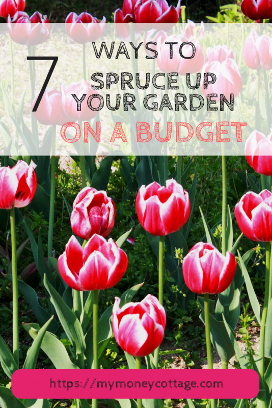 7 Ways to Spruce up your garden on a budget